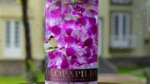amor en purpura flores orquideas arreglo