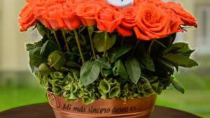 cultivo de amor arreglo flores