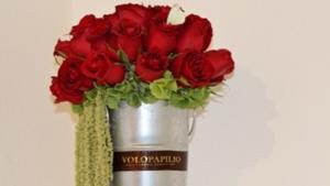 caricia de rosas flores arreglo