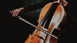 violonchelo bajo musico