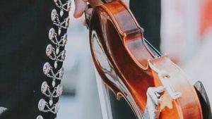 mariachi musicos violin